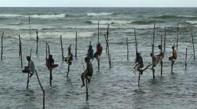 独特の魚釣り方法、ストルトフィッシング(Stilt fishing)にチャレンジ!